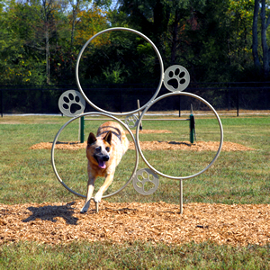 Check out our NEW Dog Park products!