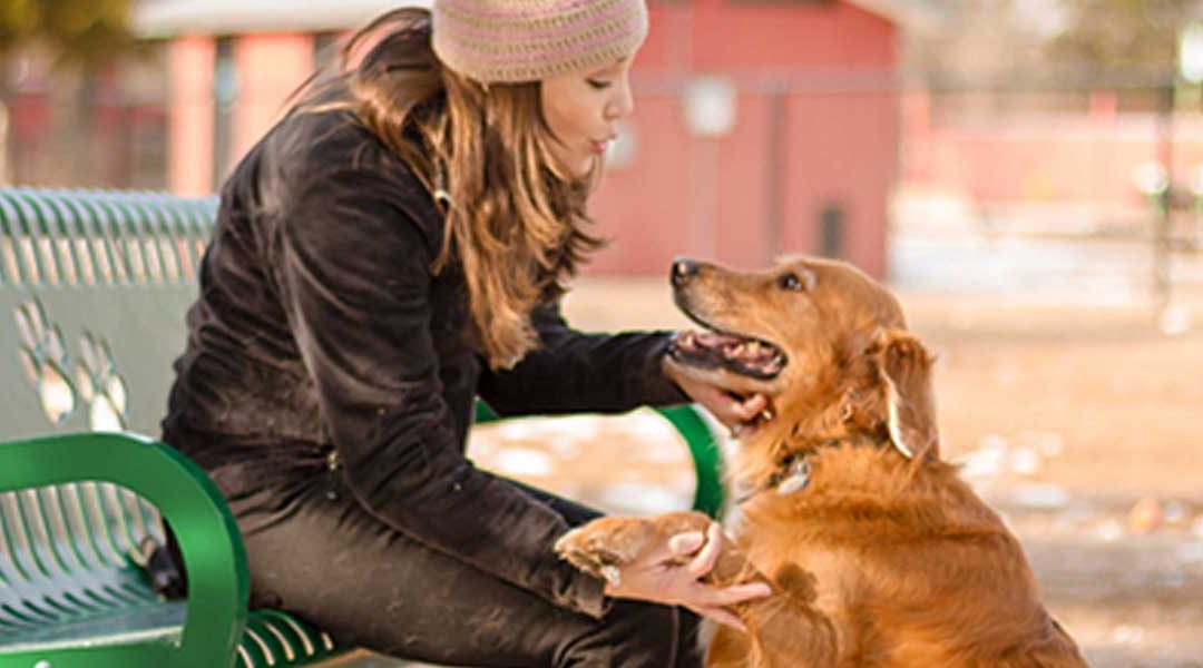 Benefits of a Dog Park